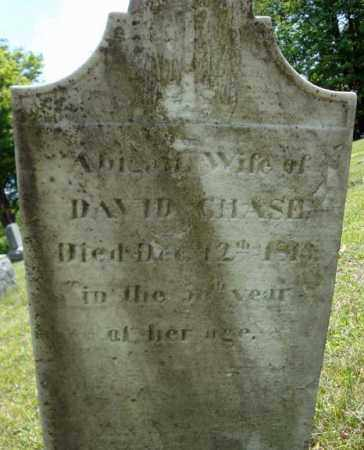 CHASE, ABIGAIL - Rensselaer County, New York | ABIGAIL CHASE - New York Gravestone Photos