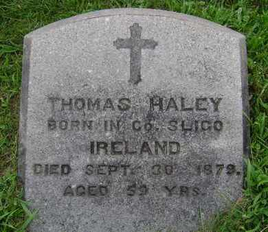 HALEY, THOMAS - Rensselaer County, New York | THOMAS HALEY - New York Gravestone Photos
