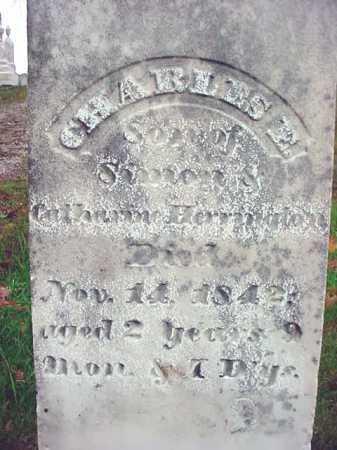 HERRINGTON, CHARLES E - Rensselaer County, New York | CHARLES E HERRINGTON - New York Gravestone Photos