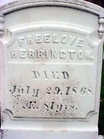 HERRINGTON, FREELOVE - Rensselaer County, New York   FREELOVE HERRINGTON - New York Gravestone Photos