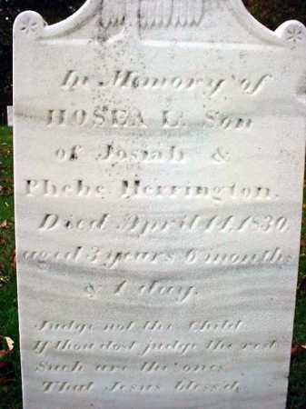 HERRINGTON, HOSEA L - Rensselaer County, New York   HOSEA L HERRINGTON - New York Gravestone Photos
