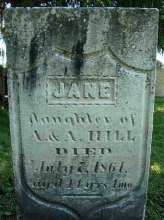 HILL, JANE - Rensselaer County, New York | JANE HILL - New York Gravestone Photos