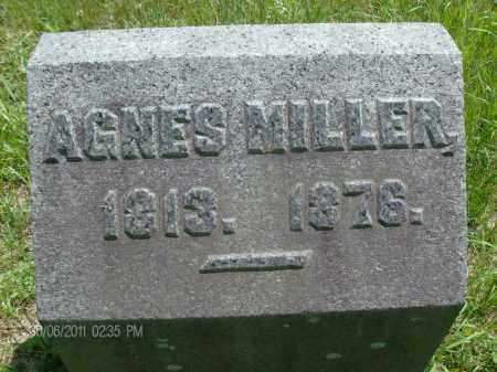 MILLER, AGNES - Rensselaer County, New York | AGNES MILLER - New York Gravestone Photos