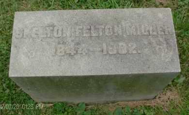 MILLER, SKELTON FELTON - Rensselaer County, New York | SKELTON FELTON MILLER - New York Gravestone Photos