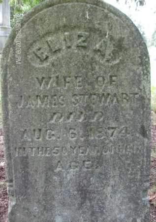 STEWART, ELIZA - Rensselaer County, New York | ELIZA STEWART - New York Gravestone Photos