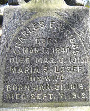 LOSEE BRIGGS, MARIA S - Saratoga County, New York | MARIA S LOSEE BRIGGS - New York Gravestone Photos