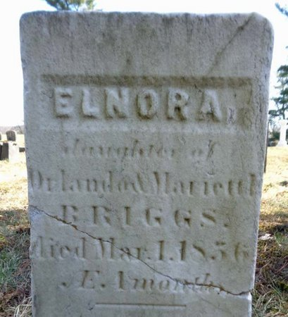 BRIGGS, ELNORA - Saratoga County, New York | ELNORA BRIGGS - New York Gravestone Photos