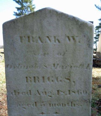 BRIGGS, FRANK W - Saratoga County, New York | FRANK W BRIGGS - New York Gravestone Photos