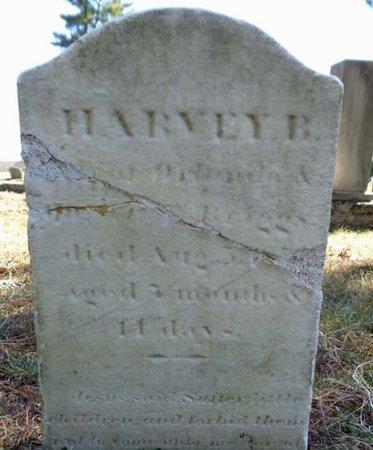 BRIGGS, HARVEY B - Saratoga County, New York | HARVEY B BRIGGS - New York Gravestone Photos