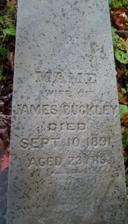 BUCKLEY, MAME - Saratoga County, New York | MAME BUCKLEY - New York Gravestone Photos