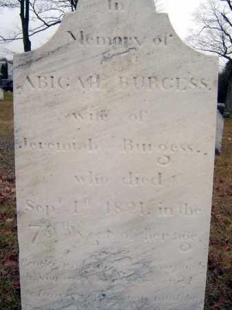 BURGESS, ABIGAIL - Saratoga County, New York | ABIGAIL BURGESS - New York Gravestone Photos
