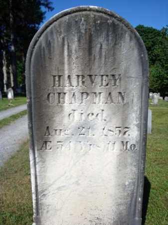 CHAPMAN, HARVEY - Saratoga County, New York   HARVEY CHAPMAN - New York Gravestone Photos
