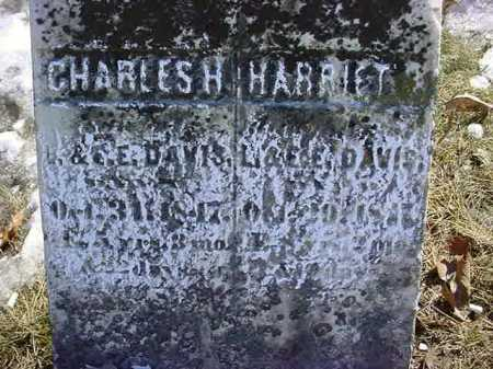 DAVIS, HARRIET F - Saratoga County, New York | HARRIET F DAVIS - New York Gravestone Photos