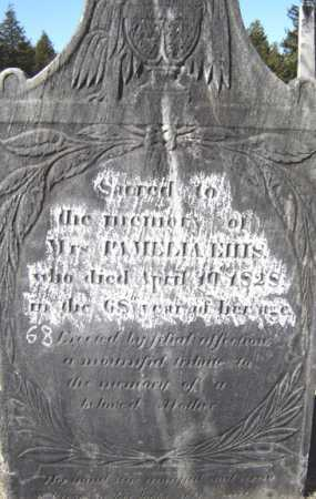 BRYAN HAMLIN, PAMELIA - Saratoga County, New York | PAMELIA BRYAN HAMLIN - New York Gravestone Photos