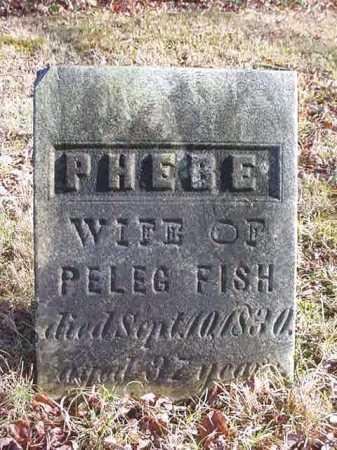 FISH, PHEBE - Saratoga County, New York | PHEBE FISH - New York Gravestone Photos