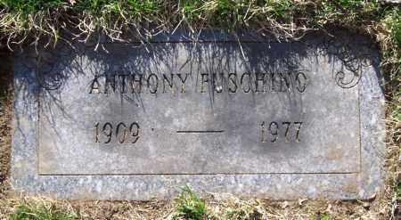 FUSCHINO, ANTHONY - Saratoga County, New York | ANTHONY FUSCHINO - New York Gravestone Photos