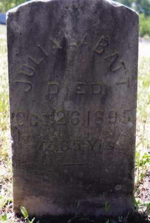 DEUEL, JULIA ANN - Saratoga County, New York | JULIA ANN DEUEL - New York Gravestone Photos