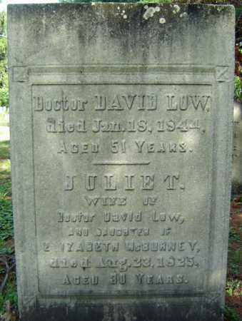 LOW, DAVID - Saratoga County, New York | DAVID LOW - New York Gravestone Photos