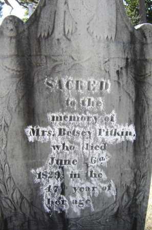 PITKIN, ELIZABETH BETSEY - Saratoga County, New York | ELIZABETH BETSEY PITKIN - New York Gravestone Photos