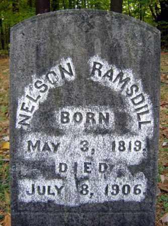 RAMSDILL, NELSON - Saratoga County, New York | NELSON RAMSDILL - New York Gravestone Photos
