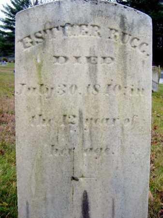 RUGG, ESTHER - Saratoga County, New York | ESTHER RUGG - New York Gravestone Photos