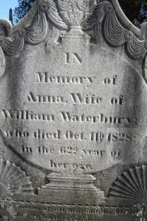 CRAWFORD WATERBURY, ANNA - Saratoga County, New York | ANNA CRAWFORD WATERBURY - New York Gravestone Photos