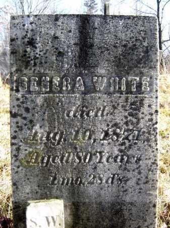 WHITE, SENECA - Saratoga County, New York | SENECA WHITE - New York Gravestone Photos