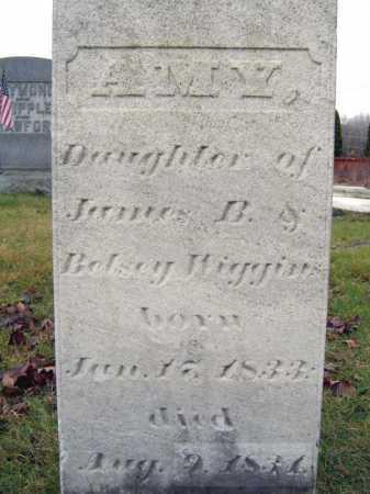 WIGGINS, AMY - Saratoga County, New York | AMY WIGGINS - New York Gravestone Photos