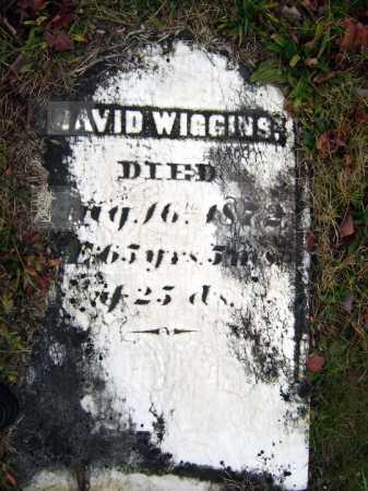 WIGGINS, DAVID - Saratoga County, New York | DAVID WIGGINS - New York Gravestone Photos