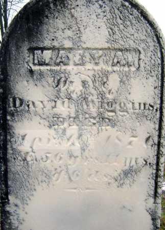 WIGGINS, MARY A - Saratoga County, New York | MARY A WIGGINS - New York Gravestone Photos