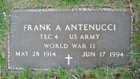 ANTENUCCI (WWII), FRANK A - Schenectady County, New York | FRANK A ANTENUCCI (WWII) - New York Gravestone Photos