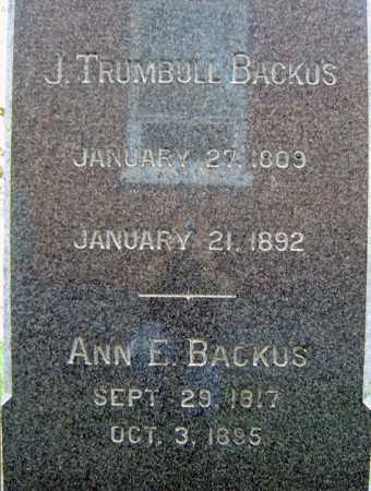 BACKUS, J TRUMBULL - Schenectady County, New York | J TRUMBULL BACKUS - New York Gravestone Photos
