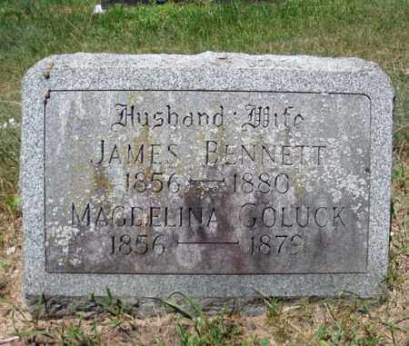 BENNETT, MAGDELINA - Schenectady County, New York | MAGDELINA BENNETT - New York Gravestone Photos