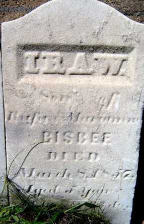 BISBEE, IRA W - Schenectady County, New York | IRA W BISBEE - New York Gravestone Photos