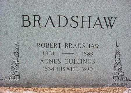 BRADSHAW, AGNES - Schenectady County, New York | AGNES BRADSHAW - New York Gravestone Photos