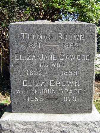 CAWOOD BROWN, ELIZA JANE - Schenectady County, New York | ELIZA JANE CAWOOD BROWN - New York Gravestone Photos