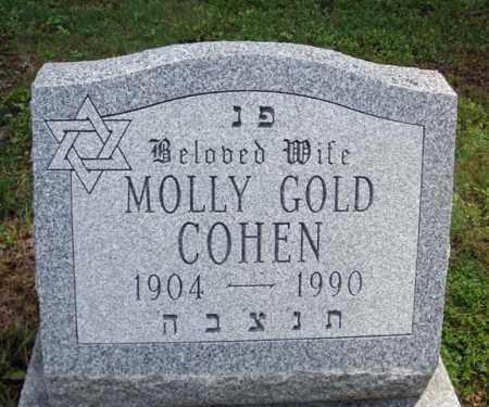 GOLD COHEN, MOLLY - Schenectady County, New York | MOLLY GOLD COHEN - New York Gravestone Photos