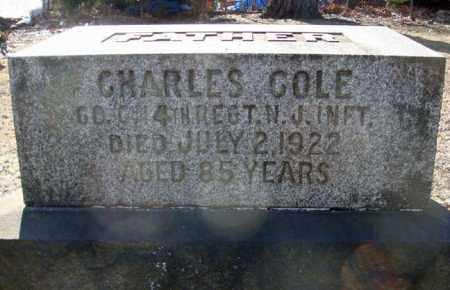 COLE, CHARLES - Schenectady County, New York   CHARLES COLE - New York Gravestone Photos