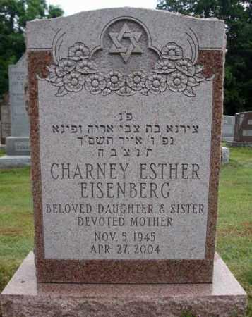 EISENBERG, CHARNEY ESTHER - Schenectady County, New York | CHARNEY ESTHER EISENBERG - New York Gravestone Photos