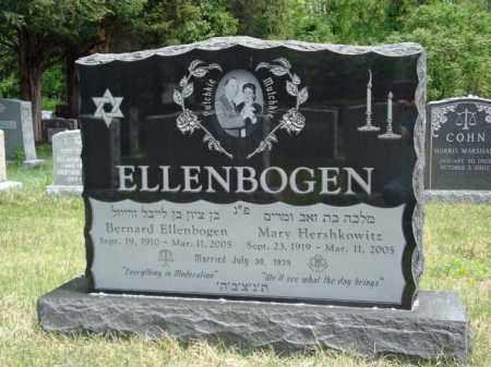 ELLENBOGEN, MARY - Schenectady County, New York | MARY ELLENBOGEN - New York Gravestone Photos