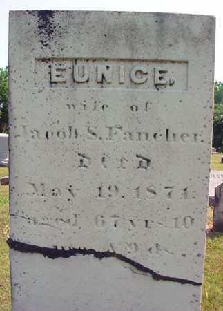 FANCHER, EUNICE - Schenectady County, New York | EUNICE FANCHER - New York Gravestone Photos