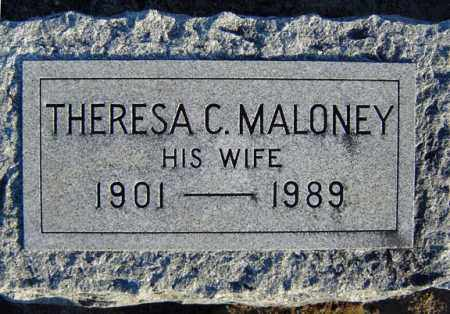 FORD, THERESA C - Schenectady County, New York | THERESA C FORD - New York Gravestone Photos