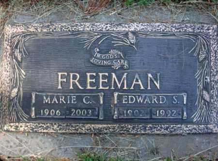 FREEMAN, EDWARD S - Schenectady County, New York | EDWARD S FREEMAN - New York Gravestone Photos