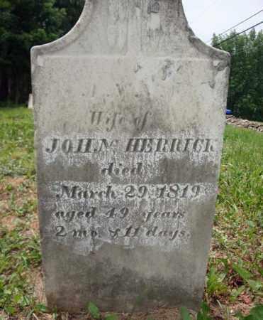 HERRICK, JOHN - Schenectady County, New York   JOHN HERRICK - New York Gravestone Photos