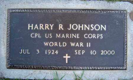 JOHNSON (WWII), HARRY R - Schenectady County, New York | HARRY R JOHNSON (WWII) - New York Gravestone Photos