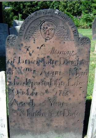 MAIN, JANE - Schenectady County, New York   JANE MAIN - New York Gravestone Photos