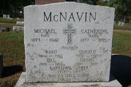 MCNAVIN, MAURA - Schenectady County, New York | MAURA MCNAVIN - New York Gravestone Photos