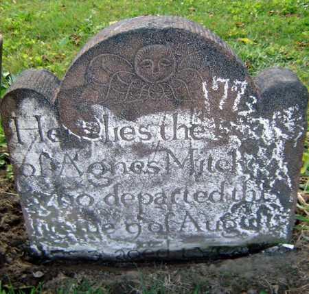 MITCHEL, AGNES - Schenectady County, New York | AGNES MITCHEL - New York Gravestone Photos