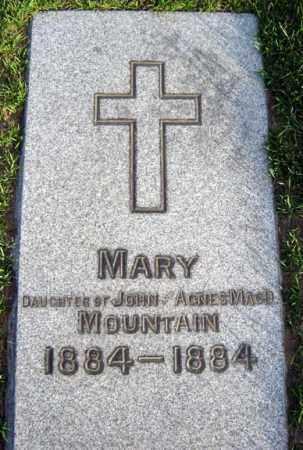MOUNTAIN, MARY - Schenectady County, New York   MARY MOUNTAIN - New York Gravestone Photos