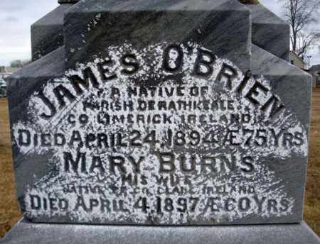 BURNS, MARY - Schenectady County, New York | MARY BURNS - New York Gravestone Photos
